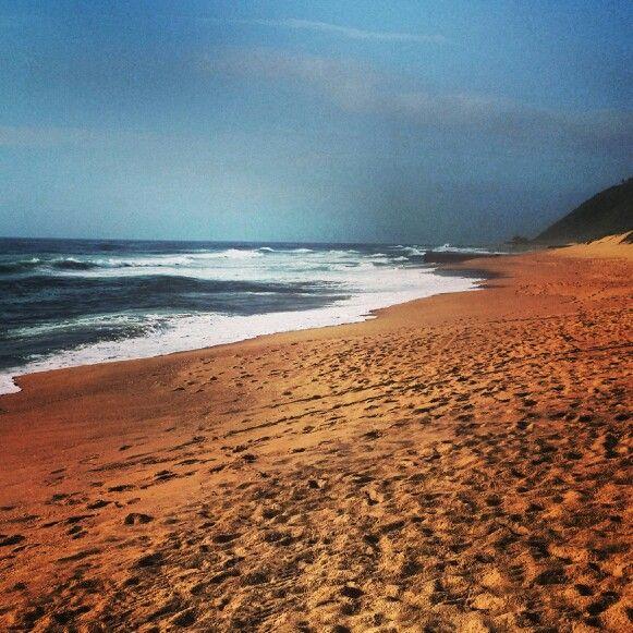 #Ansteys #Durban #Bluff