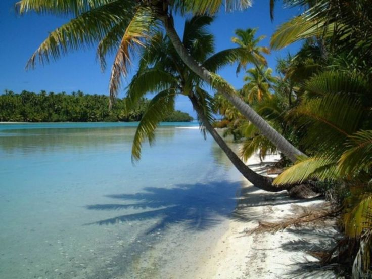 """""""One Foot Island"""" beach on Aitutaki, Cook Islands, Oceania شاطئ """"جزيرة القدم الواحد"""" في ايتوتاكي، جزر كوك، أوقيانوسيا  #education #teaching #training #writing #research #contentwriting #translation #knowledge #facts #book #magazine #newspaper #travel #tourism #tours #entertainment #geography #places #oceania"""