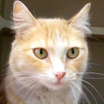 Well hiya! My name's Pinky and I fancy myself like one of the Pink Ladies from Grease! I've got a bit of spunk and a lot of love to give. Also, I'm cute as can be and will definitely spice up your life!I'm here at MaxFund because I had been...