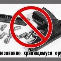 Домашний арсенал должен быть законным в НОВОСТИ на TopInfo.by