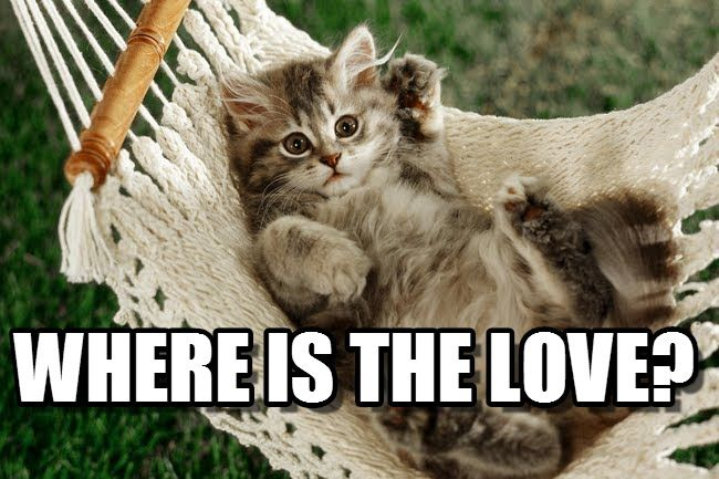 Cute Love Memes For Him And For Her - Love Is Not Abuse