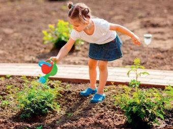Poradnik urządzania ogrodu