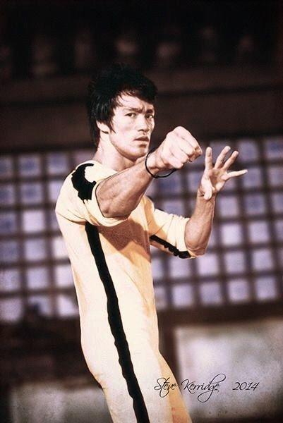 "Bruce Lee (""Game of death"")."