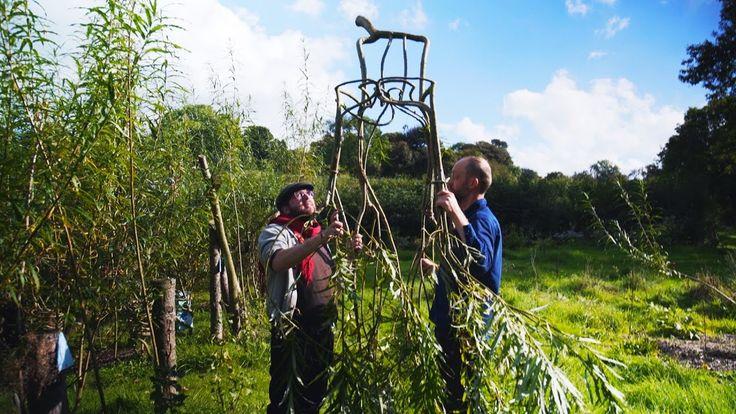 Gavin Munroe hat in Derbyshire, Grossbritannien einen Möbelgarten, wo er Stühle und Tische wachsen lässt. Während es Jahre dauert, die so gewachsenen Möbel zu ernten, ist das nichts im Vergleich dazu, wie lange wir auf einen Baum warten, um Holz auf die altmodische Weise zu produzieren. Great...
