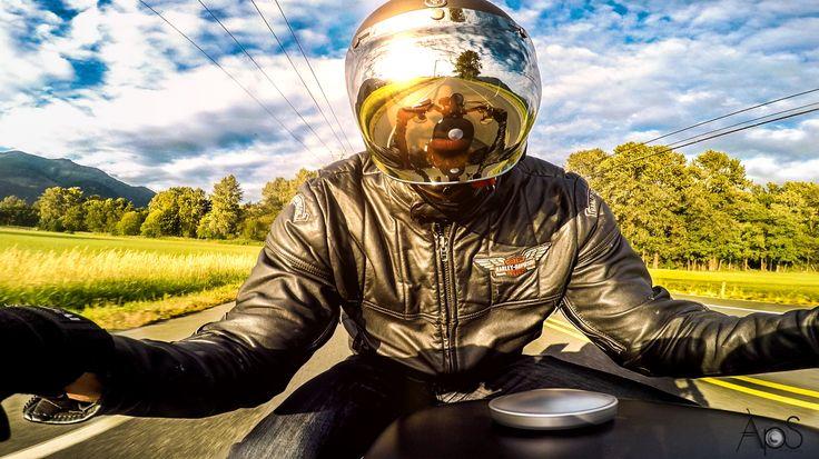 #lifebehindbars #sporster #iron883 #gopro #goprohero5 #pov #harleydavidson #motorcycle #bikerlife #sunset #niceride #canada #britishcolumbia #motolife # bubbleshield #biltwell #helmet #reflection #mirror #handlebarmount