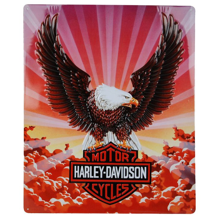 848 best everything harley images on pinterest | harley davison