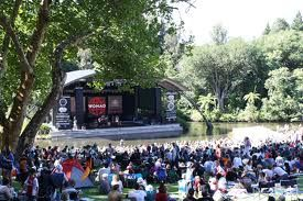 Womad festival. New Plymouth