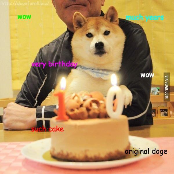 621204c5efa9434c29b4759016543591 years doge doge happy birthday meme,happy best of the funny meme