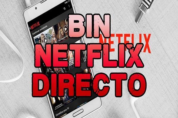 Netflix Bin Account