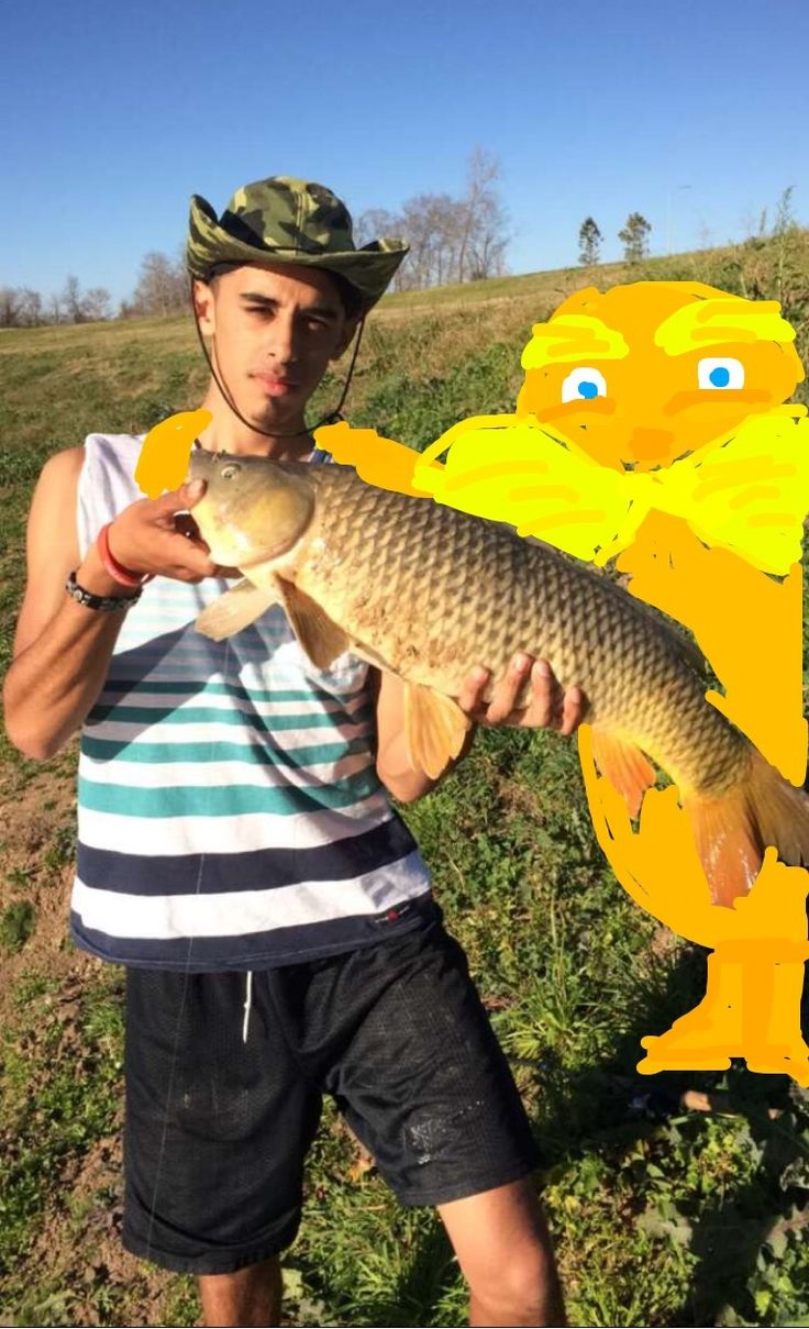 The 25 best common carp ideas on pinterest image for for Can you eat carp fish