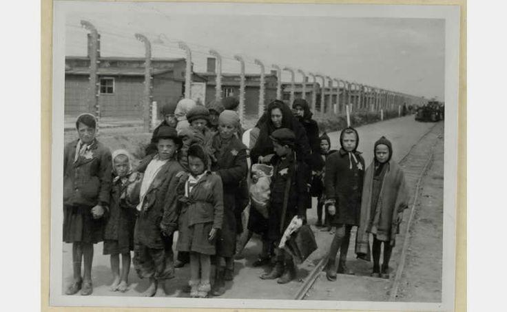 Les enfants dans la Shoah, 1933-1945, au cœur du génocide. PHOTO TROUBLANTE : Femmes et enfants juifs hongrois jugés inaptes au travail sur le chemin de la chambre à gaz n°4 du camp d'Auschwitz-Birkenau. Birkenau (sans le savoir...), Pologne, mai 1944