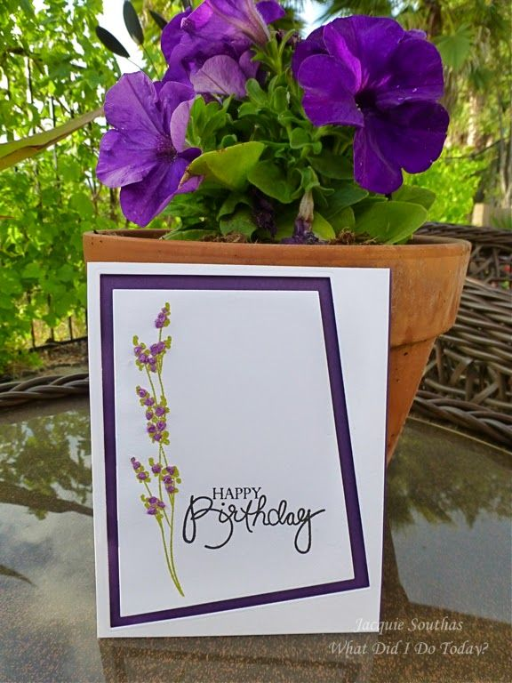 531 best Clean and Simple Cards images – Jacquie Cards Birthday