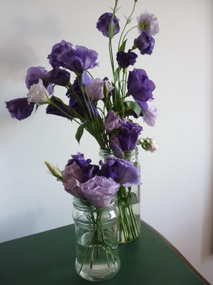 violeta en frascos