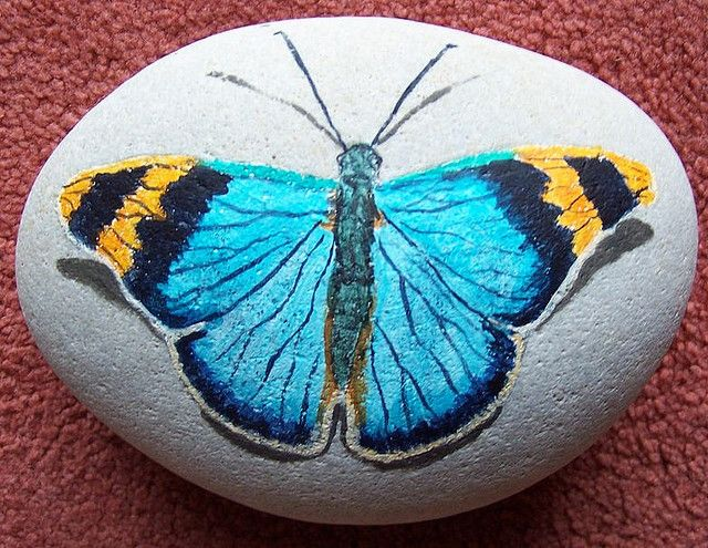 butterfly painting on stone