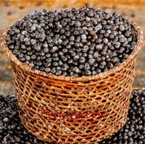 Acai Berry Benefits...slows down aging process, aids in weight loss, healthier skin and more.