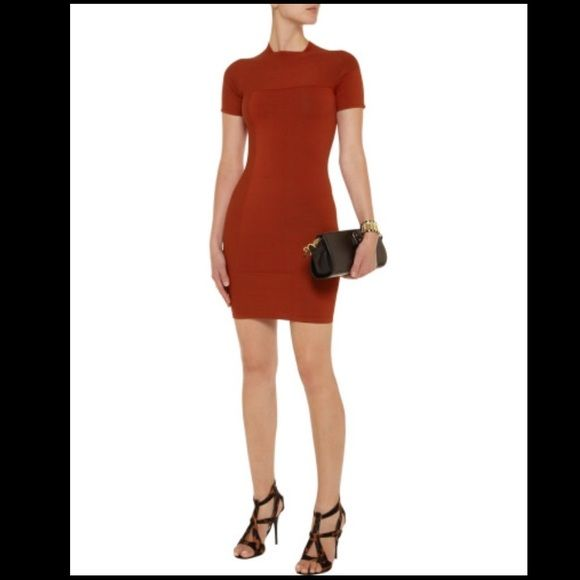 NWT ALEXANDER WANG Red Bodycon Dress $465 XS NWT Alexander Wang Red Embossed Dress XS $465, SOLD OUT!!! Bodycon style. Super sexy and chic!! This dress is featured in a paprika color with embossed angular design across the front bodice and the back. The dress is form fitting and has a ribbed square neckline. *Just out of my closet, a tiny bit dusty. It's very stretchy and tight fitting. **Marc Jacobs Wallet on Chain not included.   Style No. 100006P12 Color: Paprika Spandex/elastane 1%…