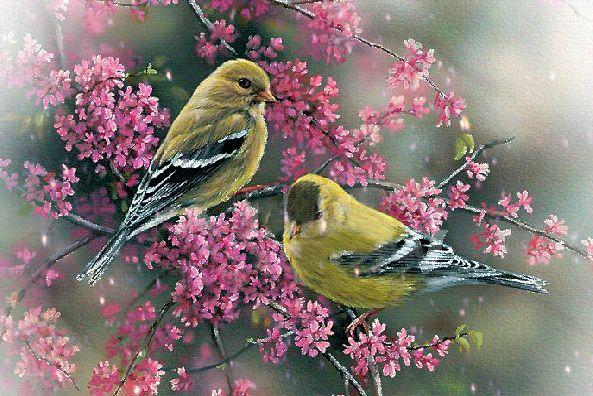 Если в твоей душе осталась хоть одна цветущая ветвь, на нее всегда сядет поющая птица.  © Китайская пословица.