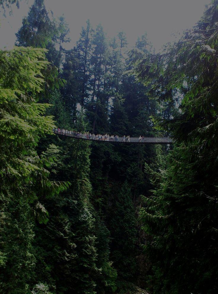 Capilano #canada # suspension bridge