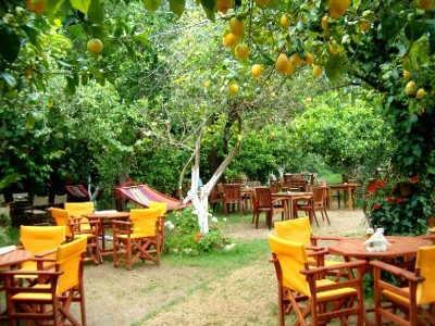 Lemon Garden Acharavi Korfu