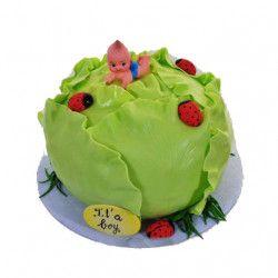 https://tortoff.net/detskie-torty/detskie-torty-na-rojdenie-malchika/ Торт на день рождения мальчика - торт в виде капусты, сверху которой лежит малыш.