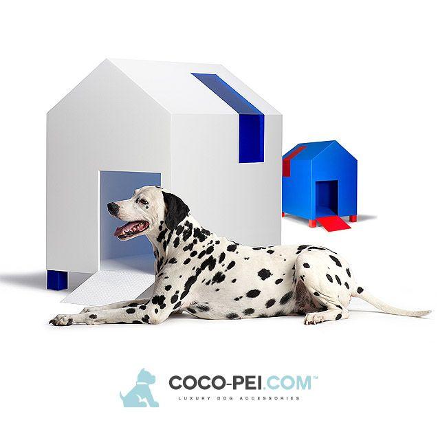 COCO-PEI.COM presenta la nuova linea di Cucce per Cani da Esterno. Complementi d'arredo concepiti per chi ama il bello e gli animali domestici. http://www.coco-pei.com/it/cucce-per-cani-da-esterno/