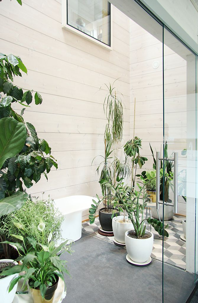 Honka Savukvartsi - urban greenery with wonderful high ceilings in the middle of the house.