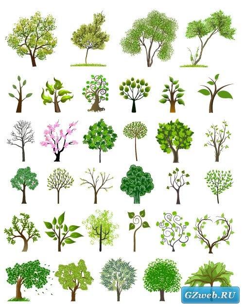 Зеленые деревья (Вектор)