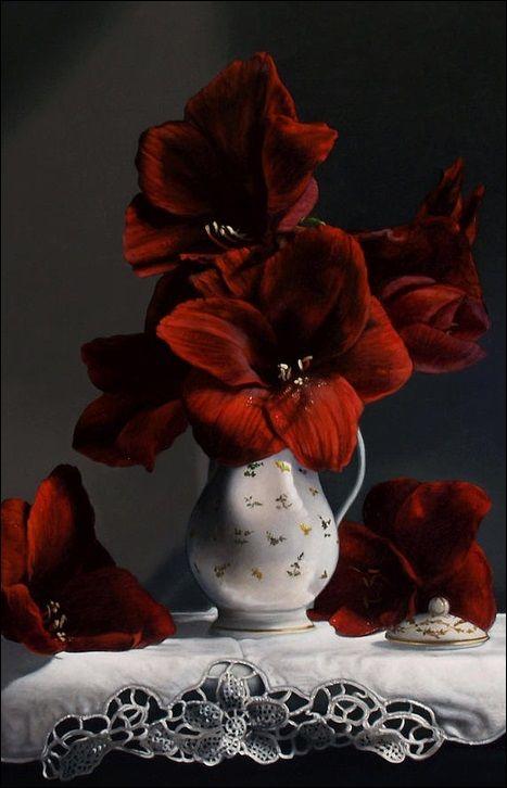 Red & Black Essence ✦ Red Amaryllis ✦ https://www.pinterest.com/sclarkjordan/red-black-essence/