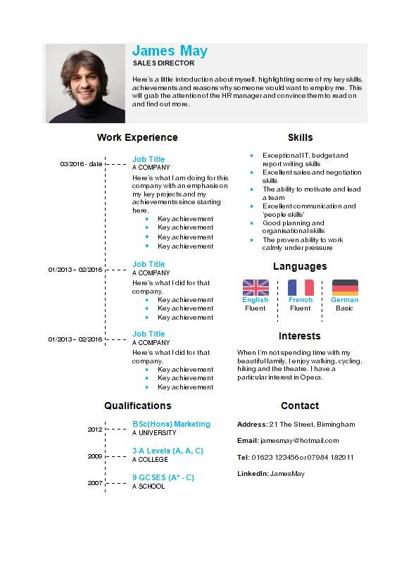 resume format with icons