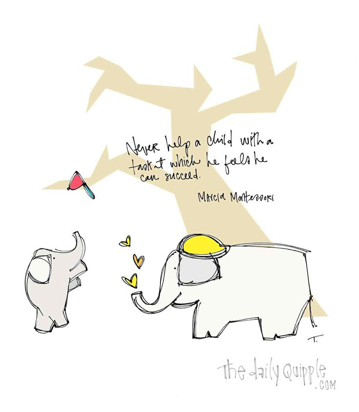 ebook Biological Basis of
