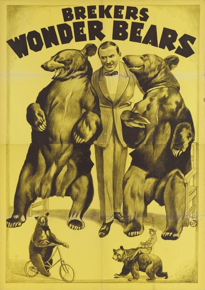 Brekers wonder bears | 1924 | Circus Museum | CC BY-SA