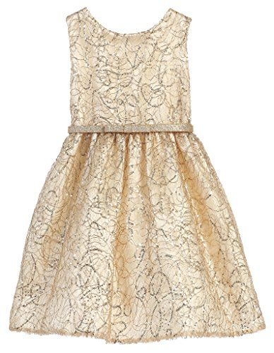 Sweet Kids Belted Embroidered Big Girls' Special Occasion Dress with Sparkle Belt , 8, Gold Sweet Kids http://www.amazon.com/dp/B014I1Y9SK/ref=cm_sw_r_pi_dp_Gwzbxb01AWMHJ