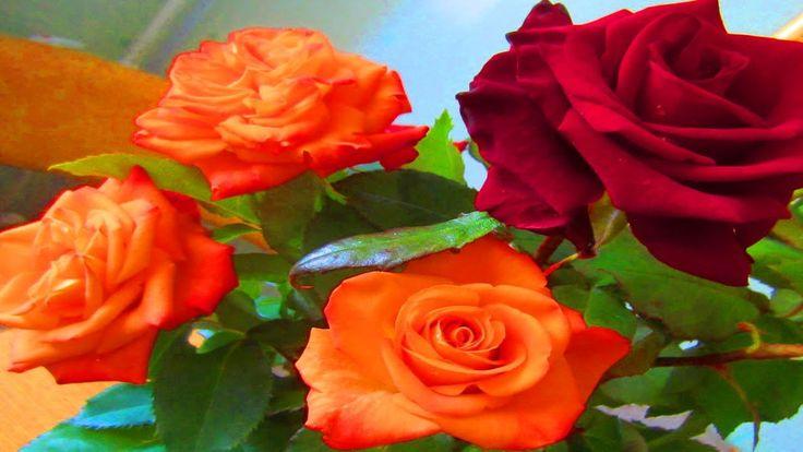 #Слайд-шоу из цветов для любимой доченьки. Поздравление с Днем Рождения
