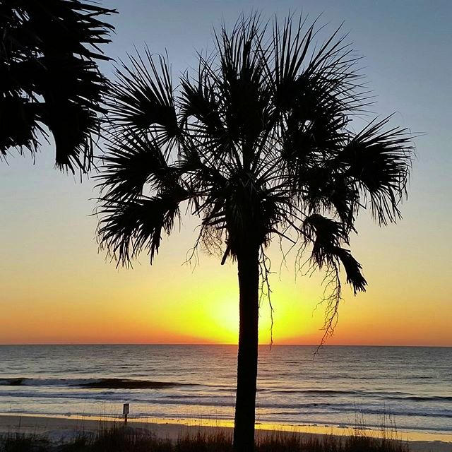 53 best myrtle beach camping images on pinterest beach camping