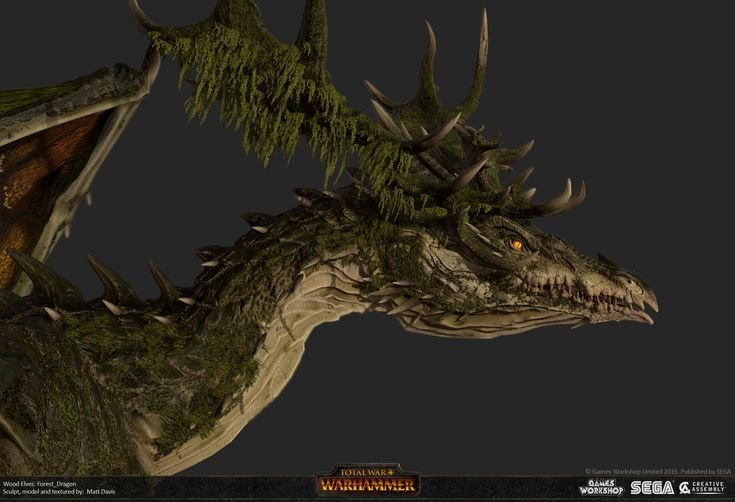 fantasy dragons warhammer high - photo #26