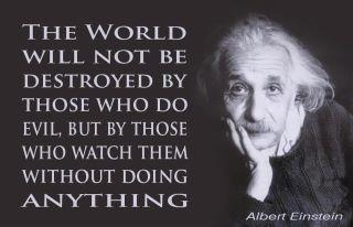 Einstein quoteThis Man, Words Of Wisdom, Food For Thoughts, Make A Difference, True Words, Take Action, Albert Einstein Quotes, Albert Einstein, True Stories