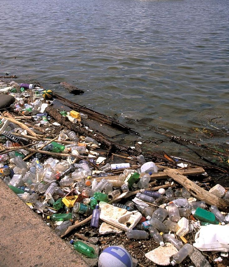 How Do Humans Pollute the Environment?