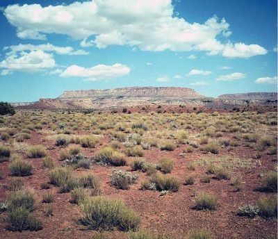 Desert soils form in areas where the demand for water by the atmosphere (evaporation) and plants (transpiration) is much greater than precipitation.  Deserts cover 20 to 33% of the Earth's land surface, and can be found in the tropics, at the poles, and in between.