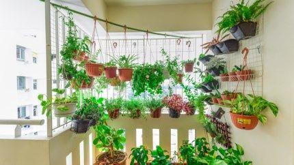 Meer dan 1000 idee n over klein terras op pinterest klein terras decoreren idee n voor patio - Claustra ontwerp pour terras ...