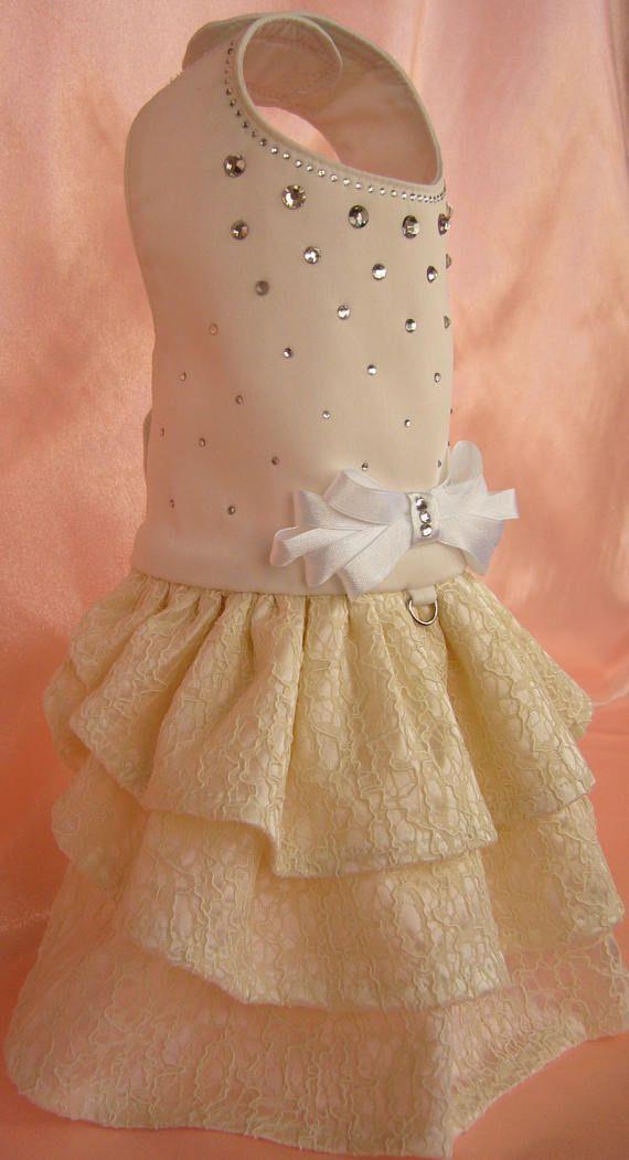 Luxury Couture Ivory dog dress with rhinestones. Size XS.