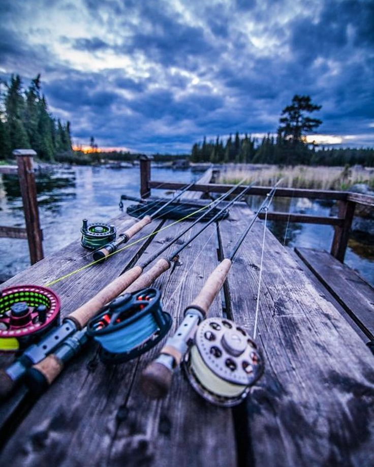 1000+ ideas about free fishing gear on pinterest | fishing, kayak, Fishing Reels
