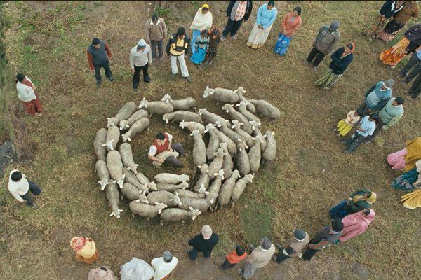 映画「神さまがくれた娘」:image005