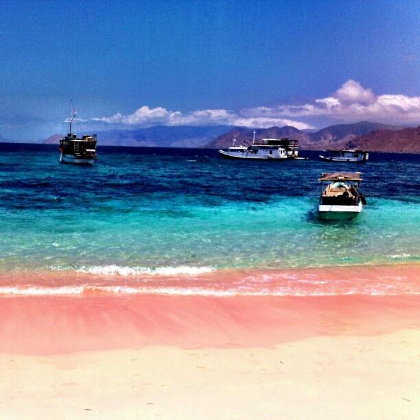 Pink Beach at Komodo Island, West Flores, Indonesia  Sangat ingin menginjakan kaki disini, melihat langsung dengan lensa Tuhan