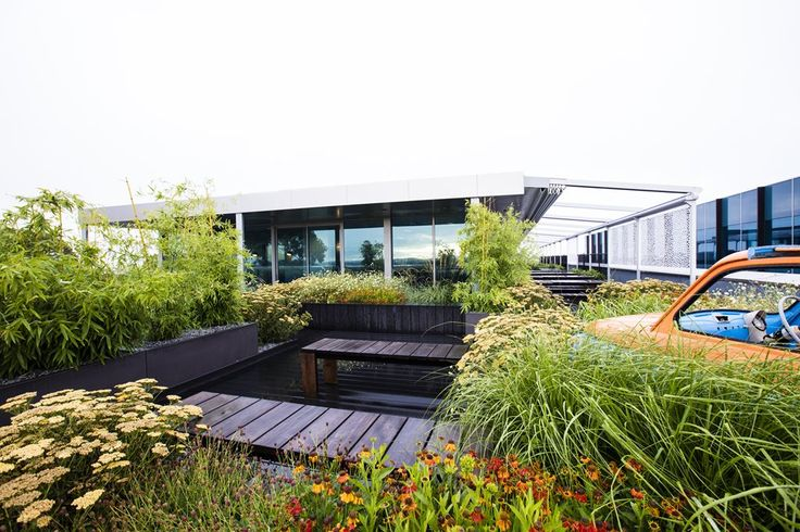 Rooftop garden in Melbourne fosters office liveability | Architecture And Design
