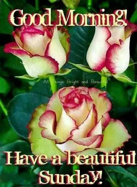 Good Morning have a beautiful Sunday....