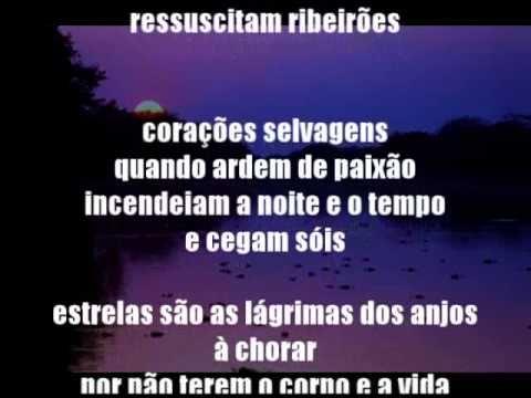Letra da música Amor Selvagem - Tema de Jove e Juma - Novela Pantanal