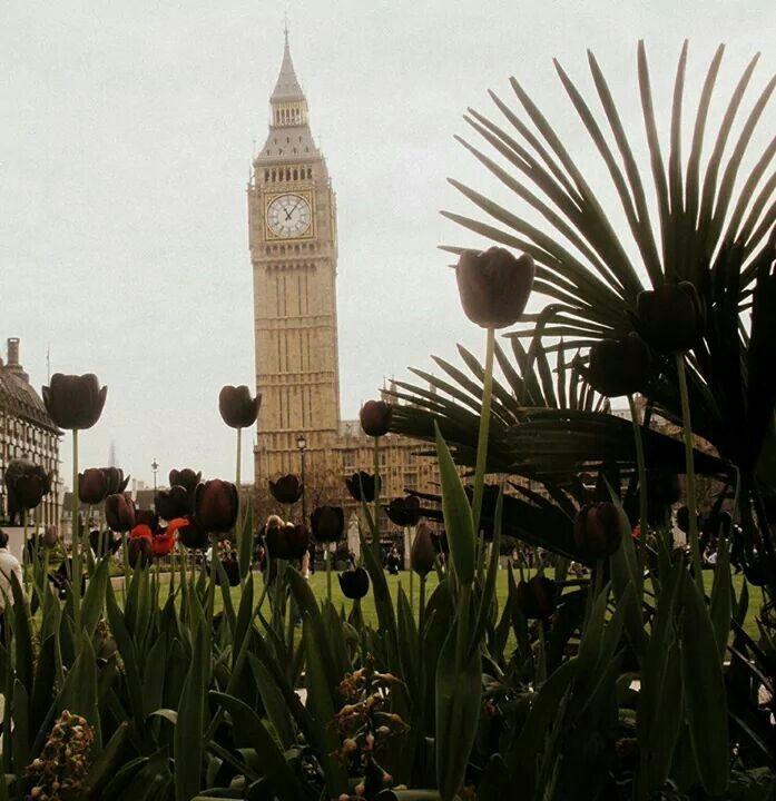 London. <3