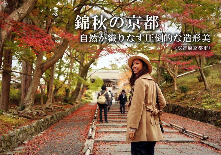 秋といえば、紅葉。紅葉といえば京都。京都の移り行く深紅の美しさを存分に味わうことができる「錦秋の京都」 #kyoto #京都 #紅葉 #毘沙門堂 #南禅寺 #永観堂 #北野天満宮