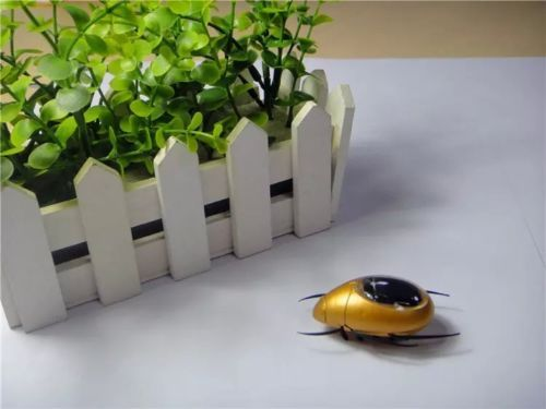 50% off for Creative-Solar-Powered-Running-Scarab-Robot-for-Children-Toy-Gift-Education $7.99 shipped. http://www.ebay.com/itm/Creative-Solar-Powered-Running-Scarab-Robot-for-Children-Toy-Gift-Education-/141821871942