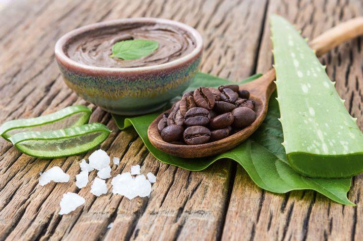 Aloe Vera Kosmetik selber machen - Rezept für selbst gemachtes Aloe Vera Gesichtspeeling mit nur 4 Zutaten - verfeinert die Poren und wirkt rückfettend ...